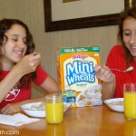 Every Day is a Big Day with Frosted Mini Wheats
