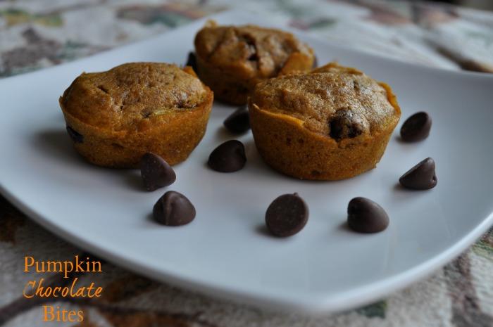 Pumpkin Chocolate Bites