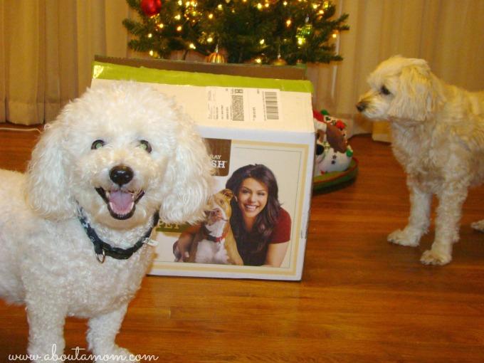 Rachael Ray Nutrish Dog Treats