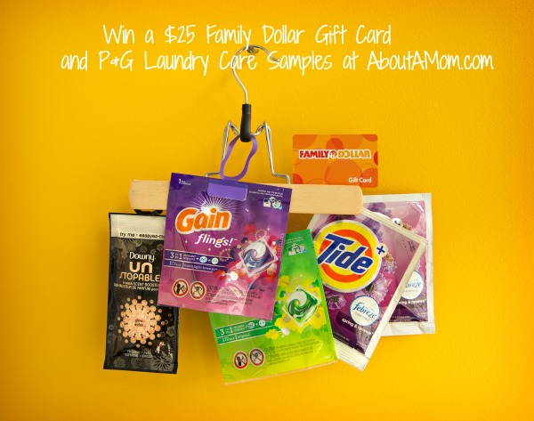 Family Dollar Fabric Care Giveaway