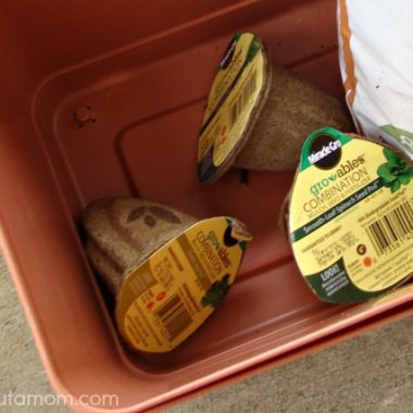 Starting a Patio Salad and Herb Garden with Gro-ables by Miracle Gro