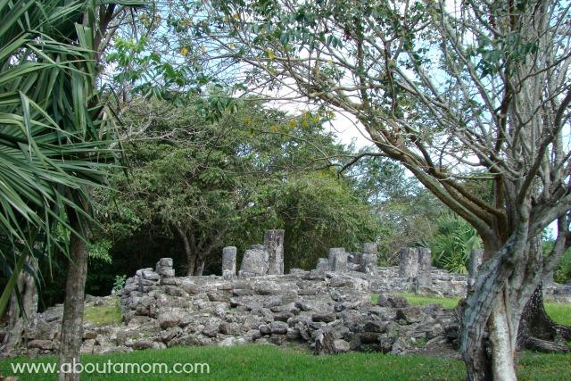 San Gervasio Mayan Ruins in Cozumel