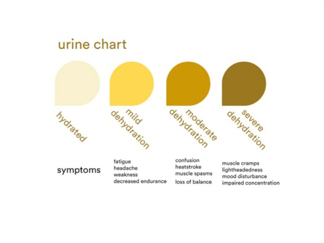 Urine Test for Dehydration