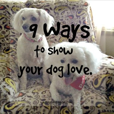 9 Ways to Show Your Dog Love