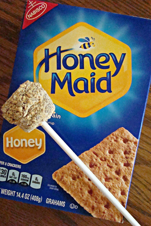S'mores on a Stick made with Honey Maid Graham Crackers