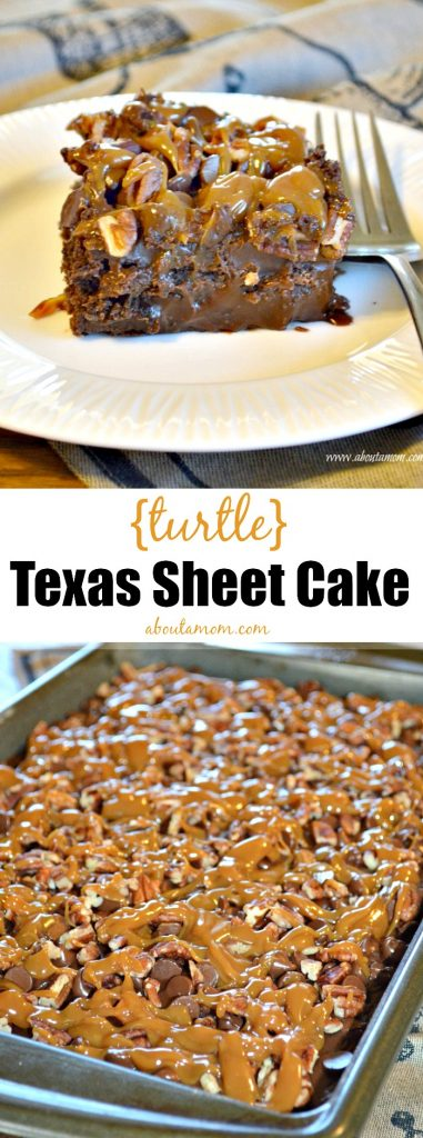 This Turtle Texas Sheet Cake recipe is a delicious and unique take on the traditional Texas Sheet Cake. The addition of caramel and pecans makes this a decadent dessert.