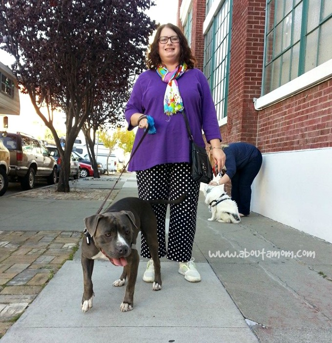 Walking Hippo at Family Dog Rescue