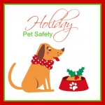 Things You Can Do to Make the Holidays Safer for Your Pets