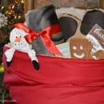 Pet Lovers Holiday Gift Basket from The Lakeside Collection