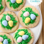 Bird's Nest Sugar Cookies