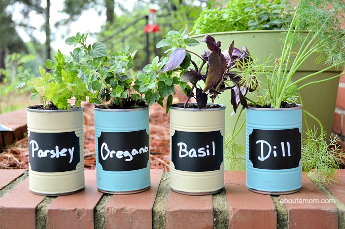 Make this diy kitchen herb garden and always have fresh herbs on hand while you are cooking. This diy herb garden uses upsycled materials and makes a great do-it-yourself Mother's Day gift.