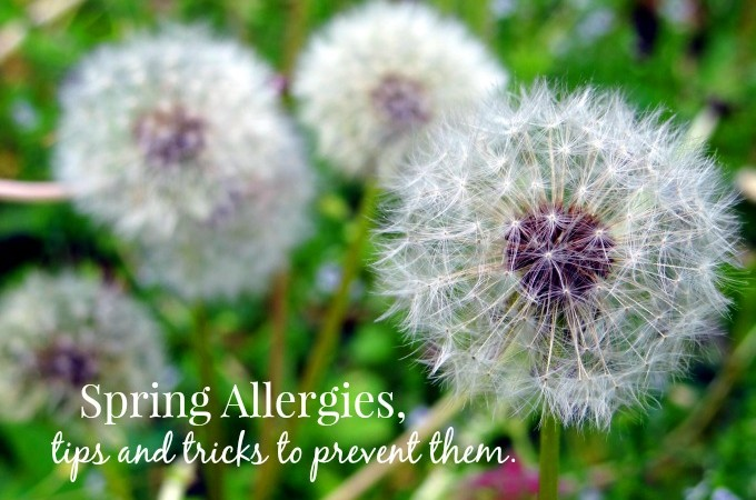 Spring Allergies, Tips and Tricks to Prevent Them