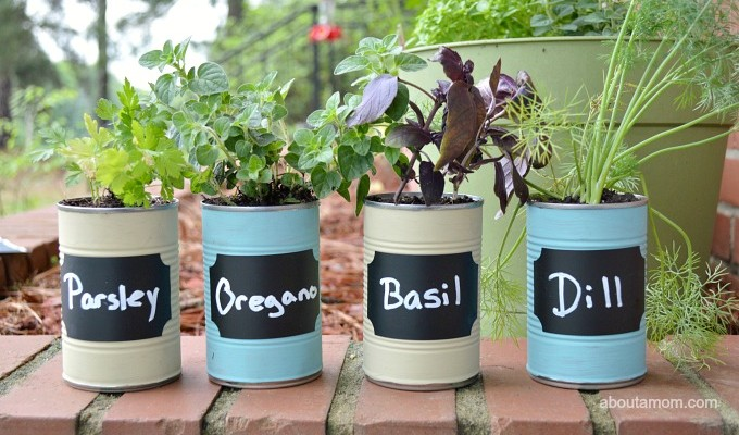 DIY Kitchen Herb Garden Gift Idea