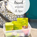 Healthy Travel Snacks and Tips
