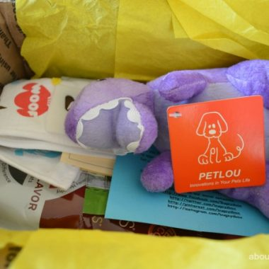 Treat Your Pet to a Bugsy's Box Subscription Box