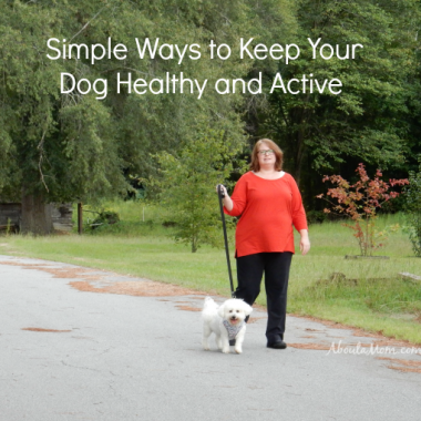 Like humans, dogs need plenty of exercise and a good diet to stay healthy. Here are some simple ways to keep your dog healthy and active, including giving them a Milk-Bone Good Morning Vitamin Treat.