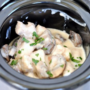 Slow Cooker Pork Stroganoff Recipe