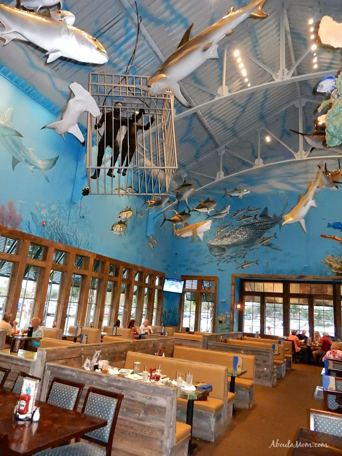 Uncle Buck's Fishbowl Destin