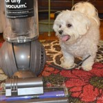 Dyson Ball Animal, a Pet Owners Dream Vacuum