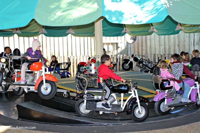 Busch Gardens 7