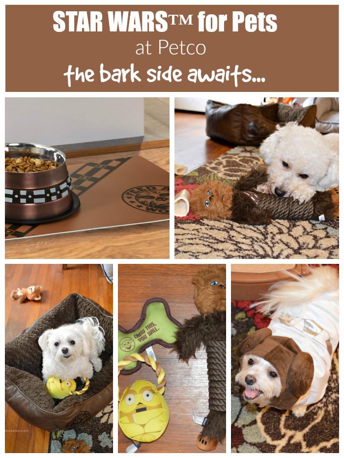 Star Wars mania continues and this time it's all about your pets. Check out the fun new Star Wars for pets collection at Petco. The bark side awaits...
