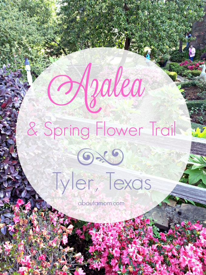 Each year, during late March and early April, something magical happens in East Texas. Bursting with blooms, the 10-mile long Tyler Texas Azalea Trail is most definitely the highlight of the spring season in East Texas.