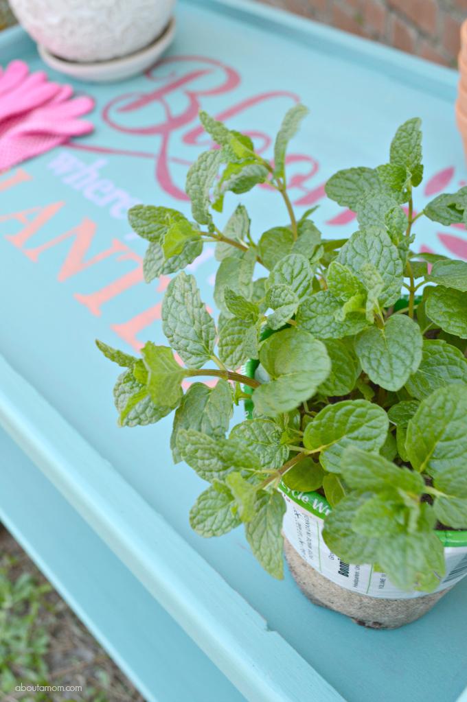 Repurpose an Old Beverage Cart into a Garden Cart