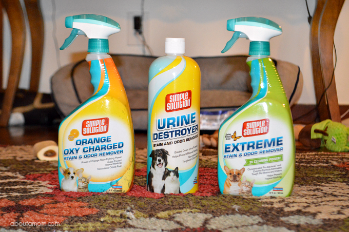 Spring Dog Care Essentials - Simple Solution