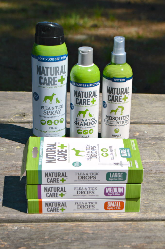 Spring and Summer Dog Care Essentials - Natural Care Flea and Tick Products