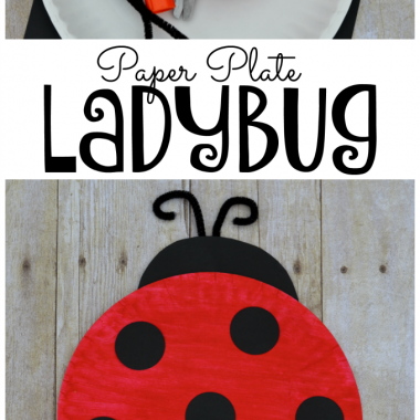 Fun, easy, and inexpensive ladybug kid craft.