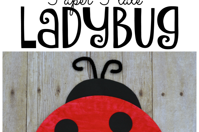 Fun, easy, and inexpensive ladybug kid craft.