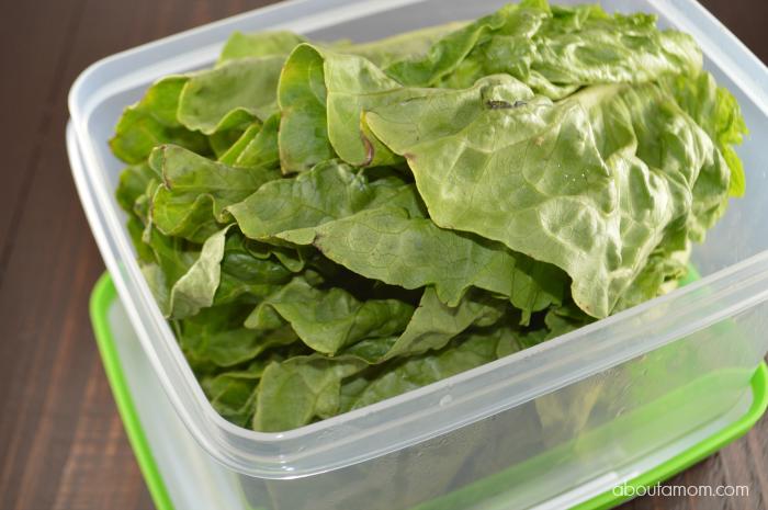 Keep Produce Fresh Longer with Rubbermaid FreshWorks Produce Savers