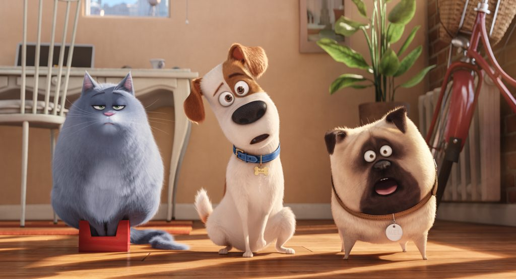 "This holiday season, the answer to the question ""Ever wonder what your pets do when you're not home?"" is answered when you get The Secret Life of Pets on DVD, Blu-ray and Digital HD. Coming soon!"