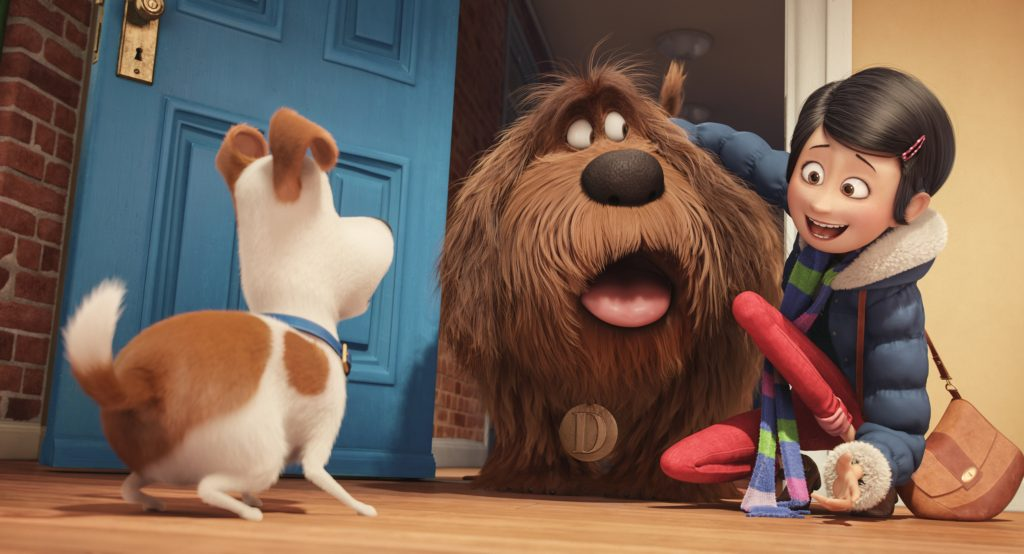 The Secret Life of Pets DVD and Blu-ray are in stores now. Get a dog bone chips recipe and inspiration to have your own The Secret Life of Pets family movie night.