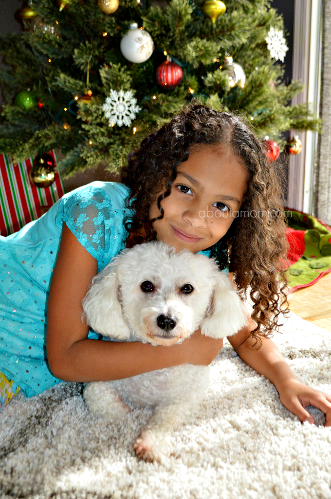 When you're celebrating your holiday traditions, don't forget to include your four-legged family members. Use these ideas to make the holidays special for your pet.