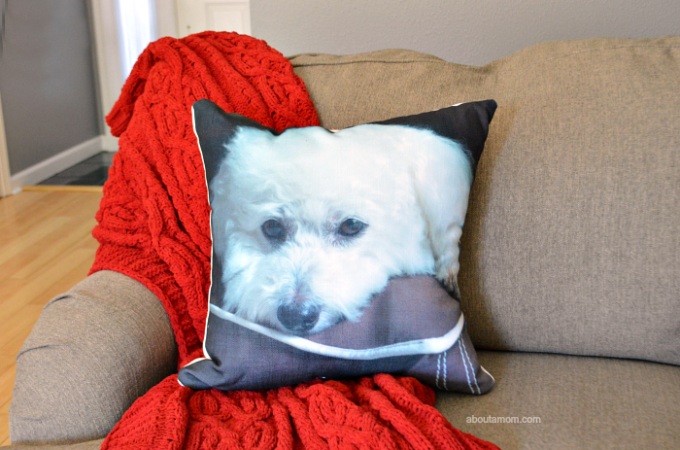Photo gifts for pet lovers. Personalized photo gifts are ideal for friends and family who adore their 4-legged family members. Give the gift of cuteness.