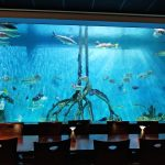 With a 33,500 gallon aquarium that covers an entire wall of the dining room, Guy Harvey's RumFish Grill & Bar in St. Pete Beach, FL, offers diners a unique experience. The menu boasts a fresh selection of cutting edge seafood, pasta, meat and poultry. Don't miss the decadent desserts while you're there or just stop in to enjoy one of two bars.