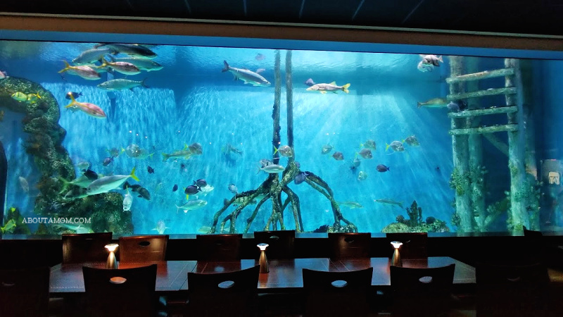 With a 33,500 gallon aquarium that covers an entire wall of the dining room, Guy Harvey's RumFish Grill in St. Pete Beach, FL, offers diners a unique experience. The menu boasts a fresh selection of cutting edge seafood, pasta, meat and poultry. Don't miss the decadent desserts while you're there, or just stop in to enjoy a drink at one of two bars located in this popular Florida seafood restaurant.