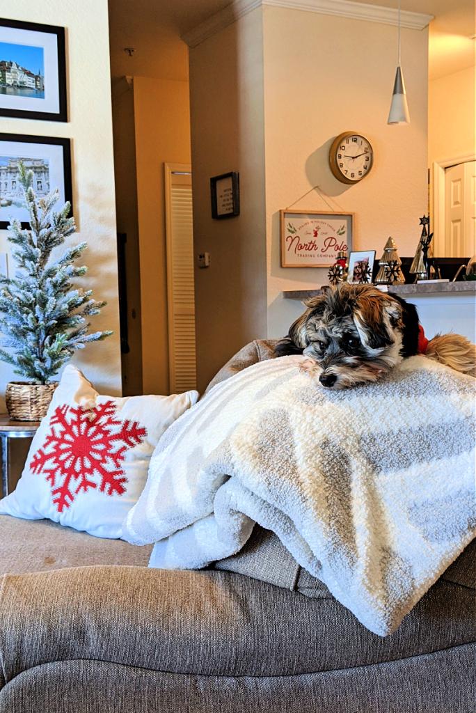 Sunday Citizen's throw blanket