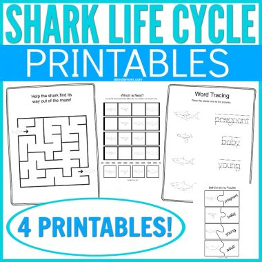 This simple Shark Life Cycle Printable is a fun way to teach kids about biology and the life cycle of a shark. So simple, kids will have fun while learning this simple STEM subject. This is a perfect Discovery Channel Shark Week activity or under the sea supplement to your homeschooling curriculum.