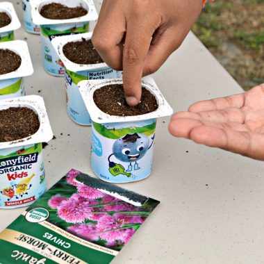 This step by step seed starting project for kids uses upcycled yogurt containers. The activity is educational, fun, and a great opportunity to teach kids about ways to lessen their environmental footprint. Also, inspire a love of gardening. It's a wondrous moment when that first seedling emerges!