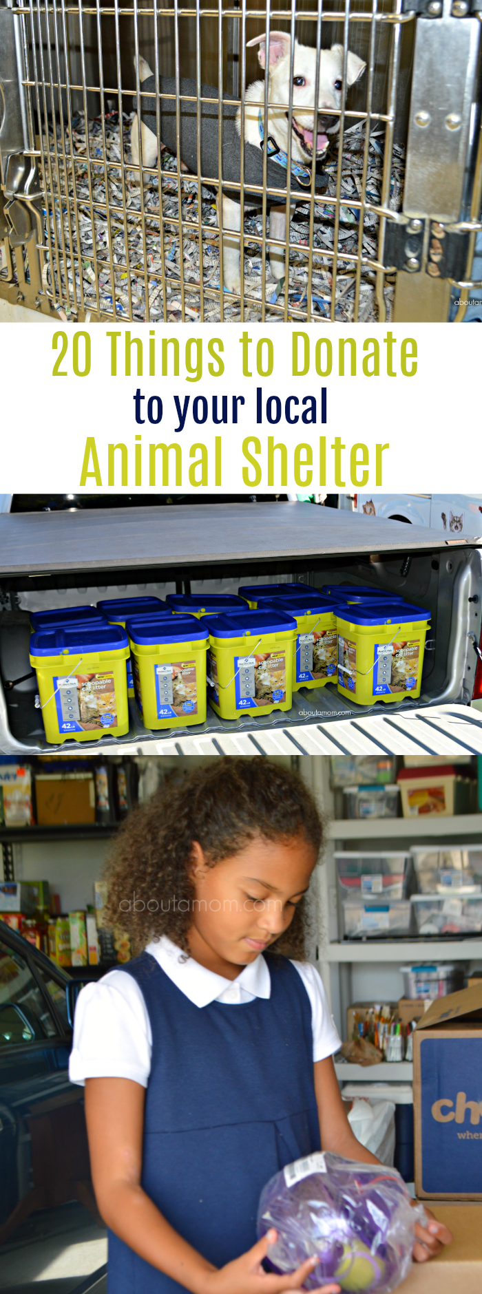 Animal shelters and rescues rely heavily on donations. Here's a list of 20 simple things to donate to your local animal shelter.
