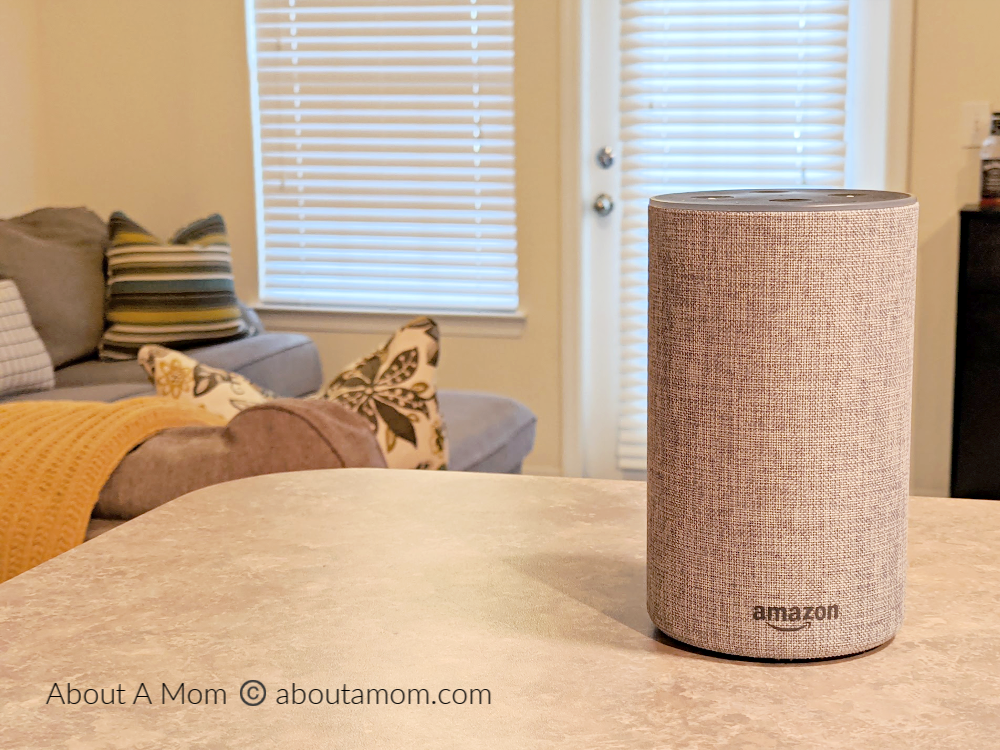 Amazon Echo device on counter