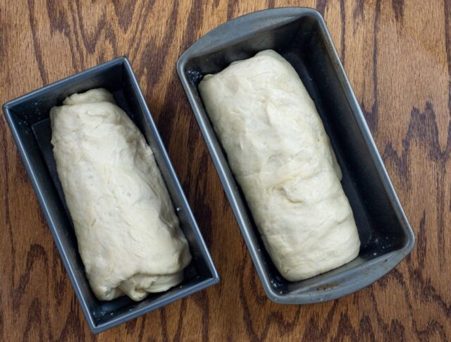 bread dough in loaf pans