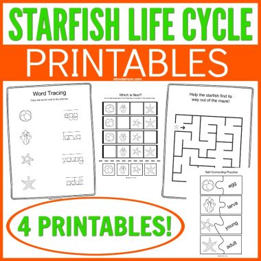 Get these fun Starfish Facts and Life Cycle Printables. A simple and fun way to bring a biology lesson to your kids. Kids will love learning about starfish with these fun free printables.