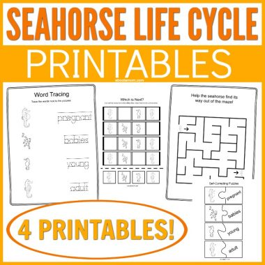 Learning about the Seahorse Facts and Life Cycle Printable has never been easier. Get these free printables to teach kids all about the seahorse.